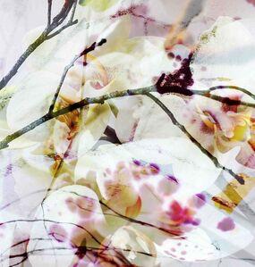 Luisa Libardi, 'Fragance VI', 2020