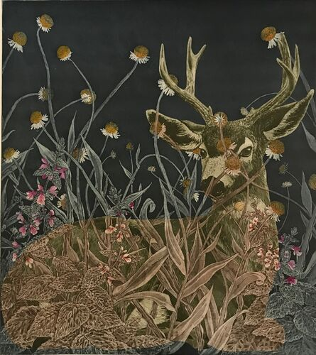 Julia Lucey, 'Black-Tailed Deer in Sneezewood and Hedge Nettle', 2018