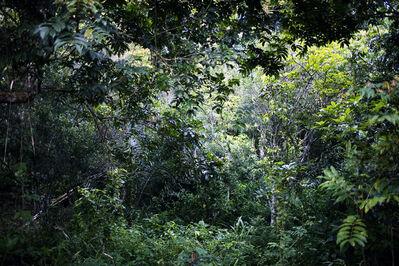 Nyaba Leon OUEDRAOGO, 'Phantoms of the Congo river (019)', 2011-2012