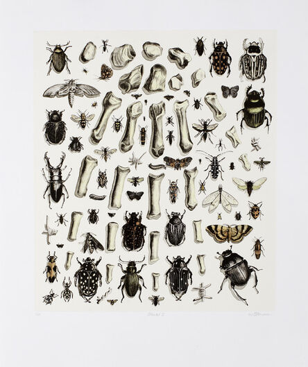 Walter Oltmann, 'Collected II', 2012