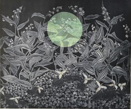 Julia Lucey, 'Redwood Sorrel, Trillium and Starry False Solomon's Seal', 2016
