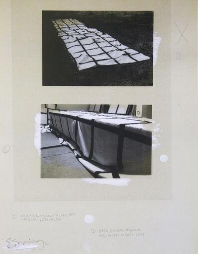 Eugenio Espinoza, 'Documentation IV, from the Documentation Series', 2016