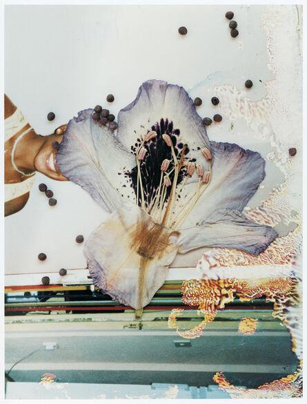 Stephen Gill, 'SGI 05 31 01 12', 2004-2007