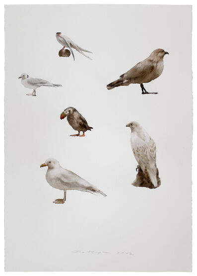 Guo Hongwei 郭鸿蔚, 'Not Yet Titled (Birds)', 2012