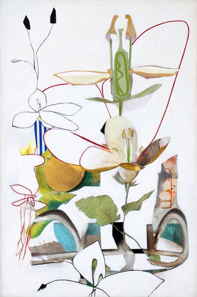 Fiona Ackerman, 'Comos', 2019
