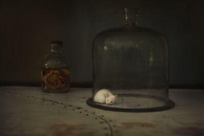 Evgenia Arbugaeva, 'Untitled #52, from the series Amani', 2015