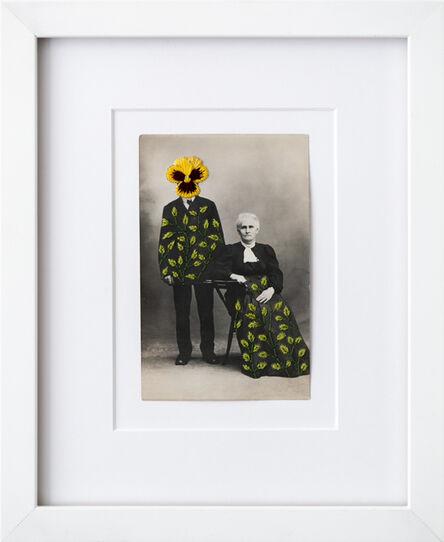 Han Cao, 'Wallflowers: Yellow pansy', 2020