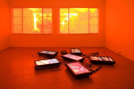 Diana Thater, 'Untitled Videowall (Butterflies)', 2008