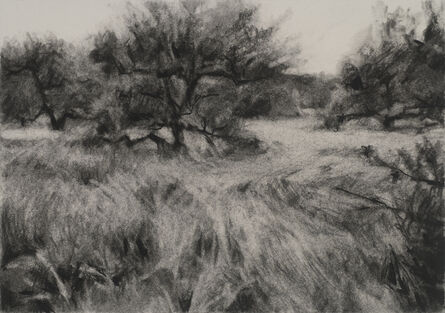 Connie Hayes, 'Orchard #9'
