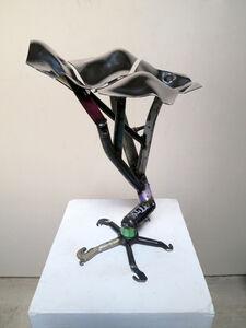 Bernard Klevickas, 'untitled (specimen) ', 2013