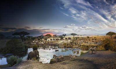 Stephen Wilkes, 'Serengeti National Park, Tanzania', 2015