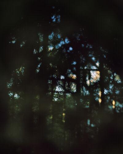 S. Billie Mandle, 'East #16'