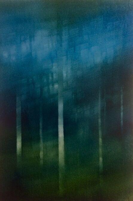 Peter Brooke, 'Forest Stacks', 2015