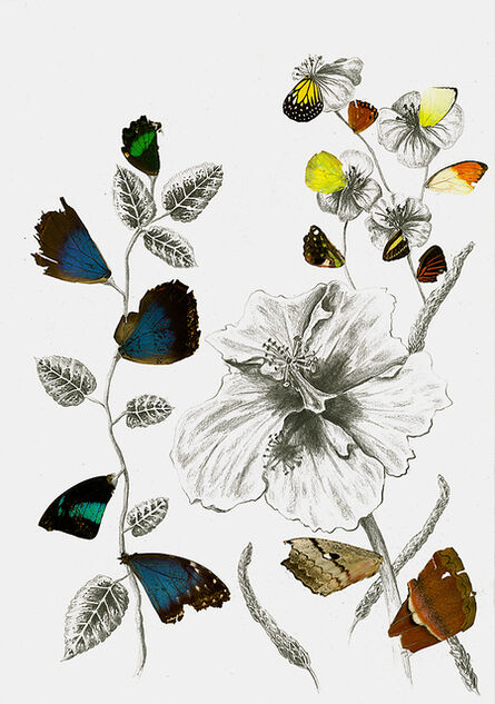 Rachel Marks, 'Hybrid Gardens I', 2019