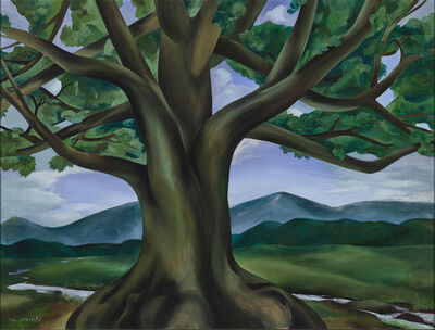Ida O'Keeffe, 'The Royal Oak of Tennessee', 1932