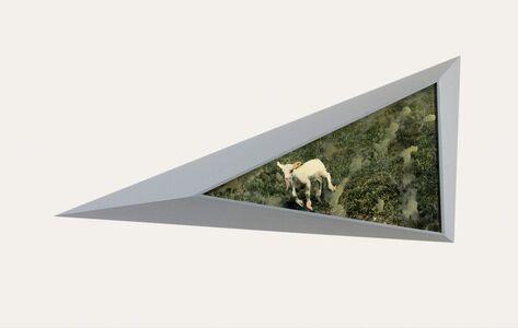 Ger van Elk, 'Lam Gods I / The Lamb of God I', 1987