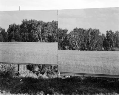 Taiyo Onorato & Nico Krebs, 'Forest 1', 2013