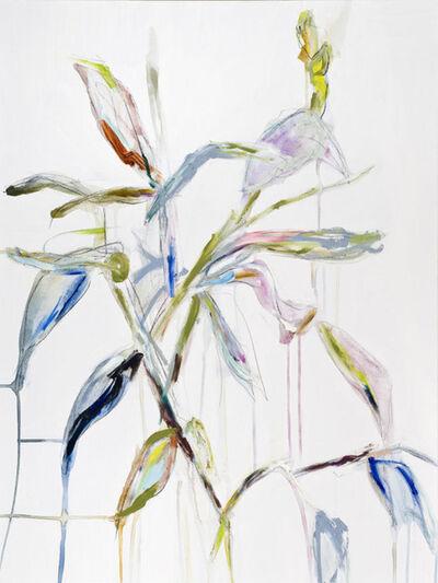 Diana Greenberg, 'Canna Lily', 2019