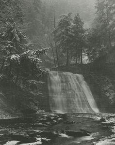 Minor White, 'Stonybrook State Park, New York', 1959
