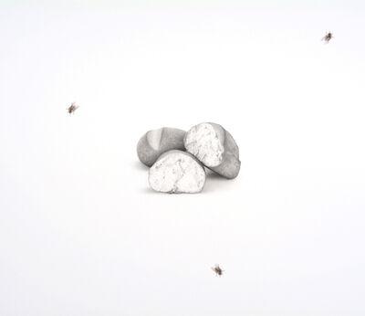 Francisco Souto, 'Bread & Flies', 2017