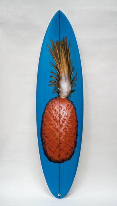 Steve Miller, 'Orange Pineapple, Blue board', 2019