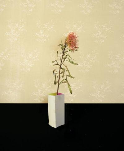Martina Lindqvist, 'Untitled #6, from the series Murmurs', 2014