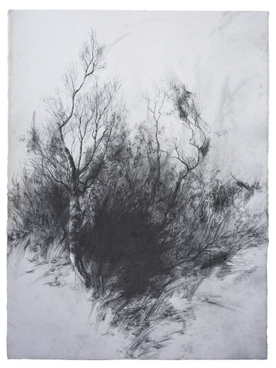 Joris Vanpoucke, 'Absence', 2018