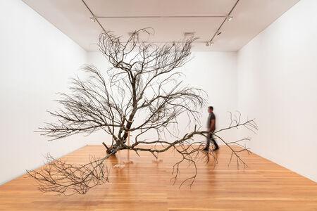 Gabriela Albergaria, 'Árvore', 2020