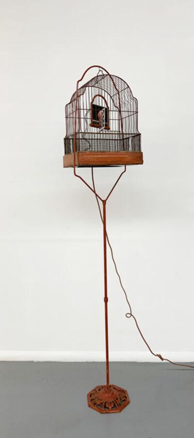 Troy Abbott, 'Seeing Red', 2014