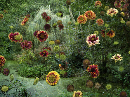 Helen Sear, 'Powdermill Ponds 1 ', 2020