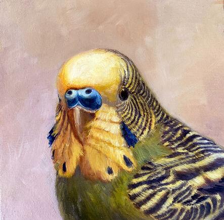 Deborah Davidson, 'Green Parakeet Portrait', 2020