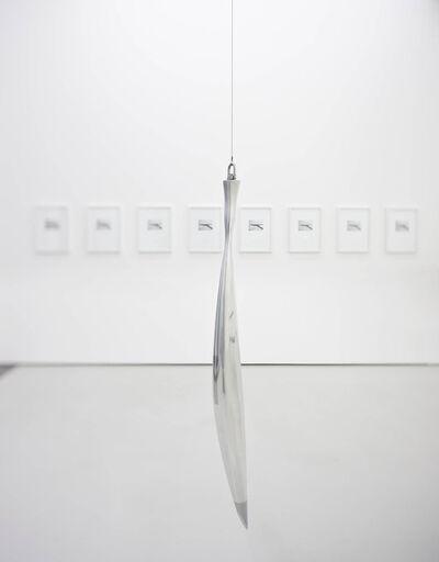 Iñigo Manglano-Ovalle, 'Bird in Space Prototype for Re-Entry', 2013