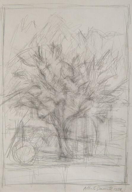 Alberto Giacometti, 'Arbre', 1952