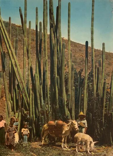 Hugo Brehme, 'Paisaje de Oaxaca, Mexico', ca. 1920-1930