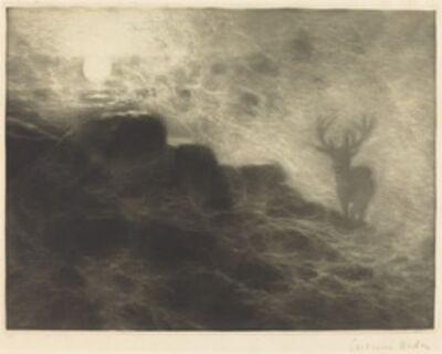 Francis Seymour Haden, 'An Early Riser', 1897
