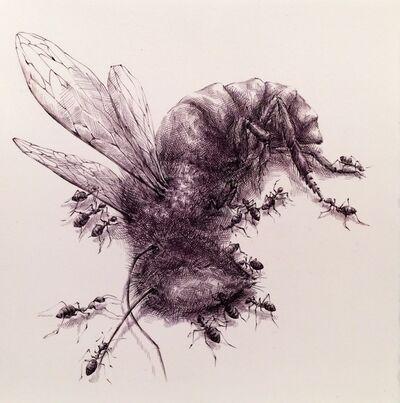 Joo Lee Kang, 'Insects #1', 2014
