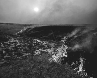 Daniel Coburn, 'Inferno', 2014