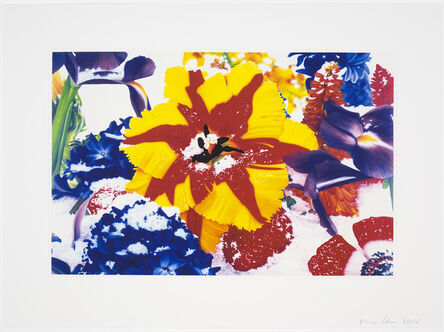 Marc Quinn, 'Untitled 03 from Six Moments of Sunrise on the Ganges Delta', 2008