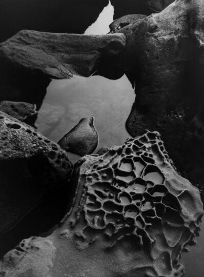 Brett Weston, 'Tide Pool, Point Lobos', 1977