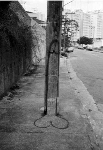 Eduardo Kac, 'Totem', 1980