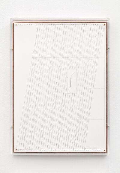 Kasper Bosmans, 'Fox Whiskers 27', 2015