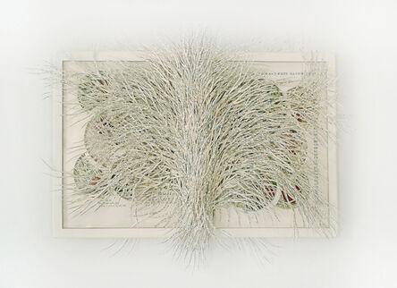 Barbara Wildenboer, 'Proteus Turning into Water', 2015