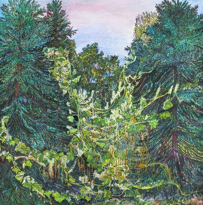 Nancy Friese, 'Wild Vine', 2013