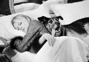 Terry O'Neill, 'Brigitte Bardot, Les Novices', 1970