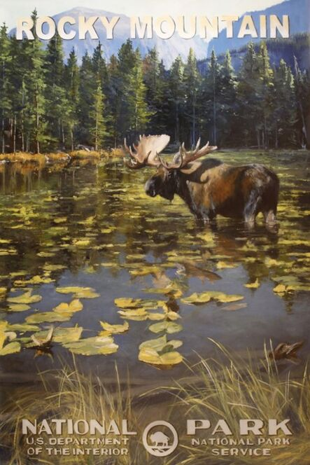 Jennifer Johnson, 'Rocky Mountain National Park - Moose', 2020