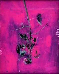 Tilman Hornig, 'The new romanzer nr. 13', 2008
