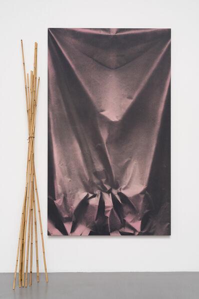 Ulla von Brandenburg, 'Folds and Bamboo', 2015