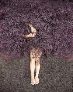 Natasha Shulte, 'Untitled 5', 2019