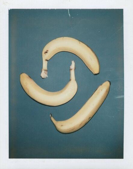 Andy Warhol, 'Polaroid Photograph of Bananas ', 1978