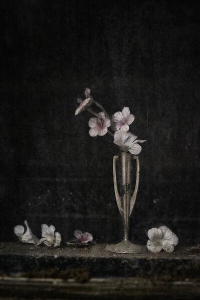 Christopher Thomas, 'Eternity 06', 2005